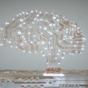 The Brain And Neuroscience